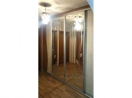 Шкаф-купе с зеркальными дверями и пескоструем
